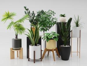 plant nature 3D model