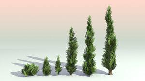 6 trees 3D model