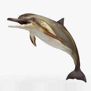 dolphin l935 3D model