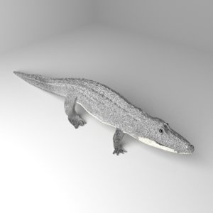 alligator gator 3D model