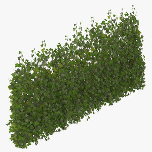ivy patch 5x2 5m 3D model