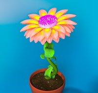 Cartoon Rising Daisy Pink Flower Rigged