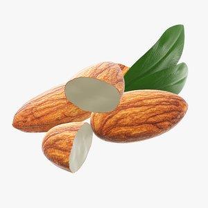 almond nut 3D model