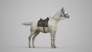 3D animal white horse