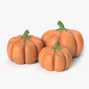 pumpkin fruit 3D model