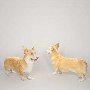 2020 corgi dog 3D model