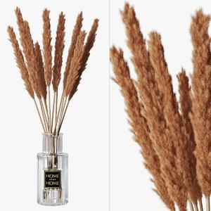 3D pampas grass