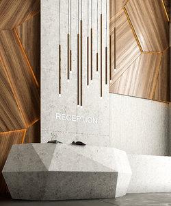 reception o 3D