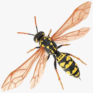 vespid wasp fur 3D model