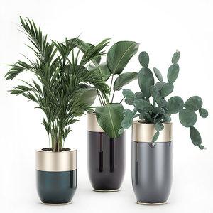 plants interior houseplants luxury 3D model
