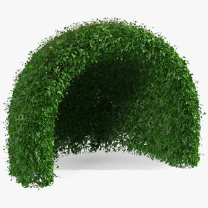 green gazebo shrub 3D model