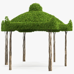 garden twig gazebo 3D