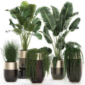 plants interior houseplants luxury 3D