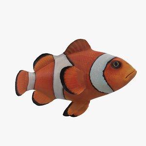 3D clown fish