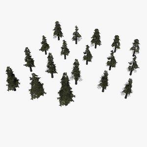 pine tree pinetree 3D model