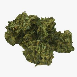 marijuana weed 3D