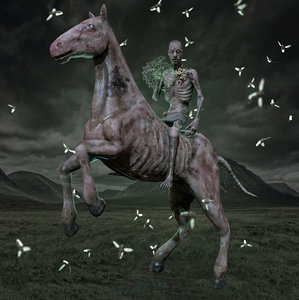 undead horse rider character monster model