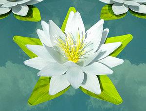 3D rigged white flower model