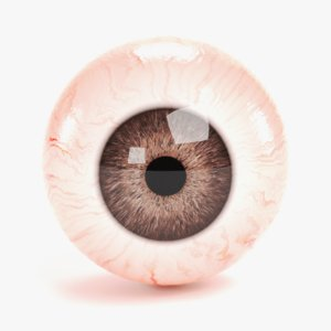 eyeball 1 3D model