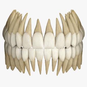 zbrush teeth - 3D model
