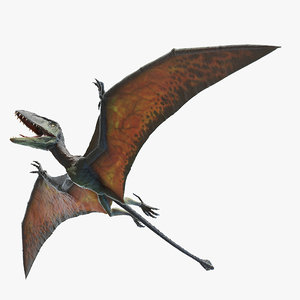 dimorphodon model
