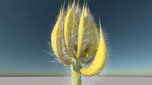tree plants flower 3D model