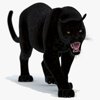 Black Panther Animated