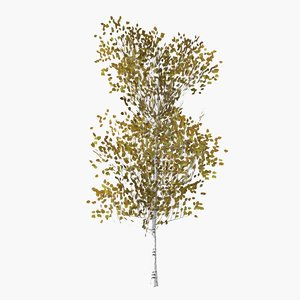 3D pyrus autumn model