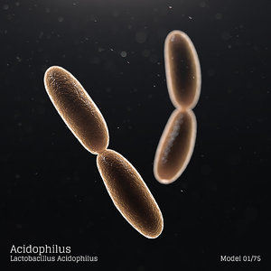 3D microbes bacteria cells