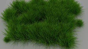 monkey grass model