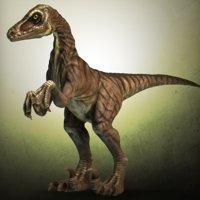Velociraptor high poly