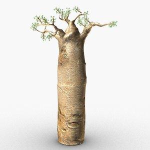 3D baobab tree model