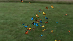 r20 butterfly animation 3D