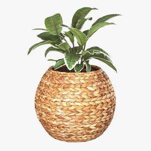 3D planter wicker basket