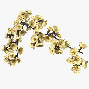 tree branch yellow flowers 3D model