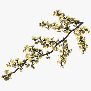 yellow cherry blossom branch tree 3D model
