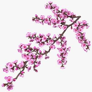 3D sakura branch flower buds