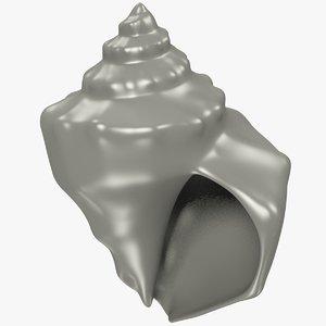 3D seashell real