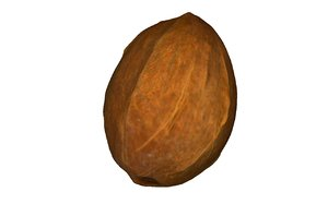 coconut real 3D