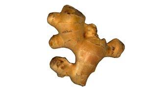 3D ginger scan scanner model