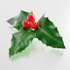 3D plant christmas