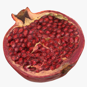 3D pomegranate half cut 02