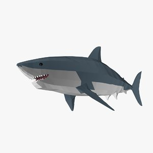 3D shark fish model