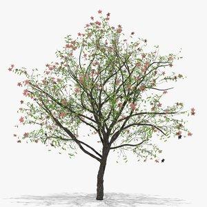 peach flowers hight 3D model