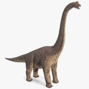 3D brachiosaurus standing pose model