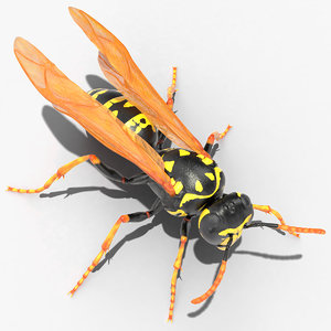 3D paper wasp standing pose