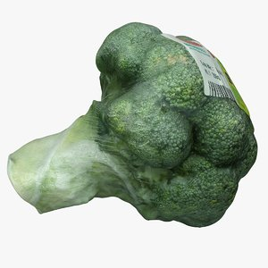3D model packed broccoli