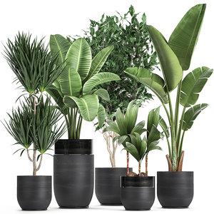 interior black houseplants 3D model