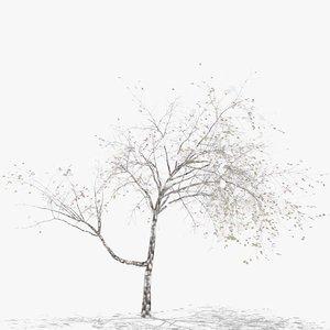 3D plum winter hight