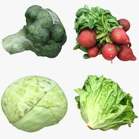 Vegetables Collection 02
